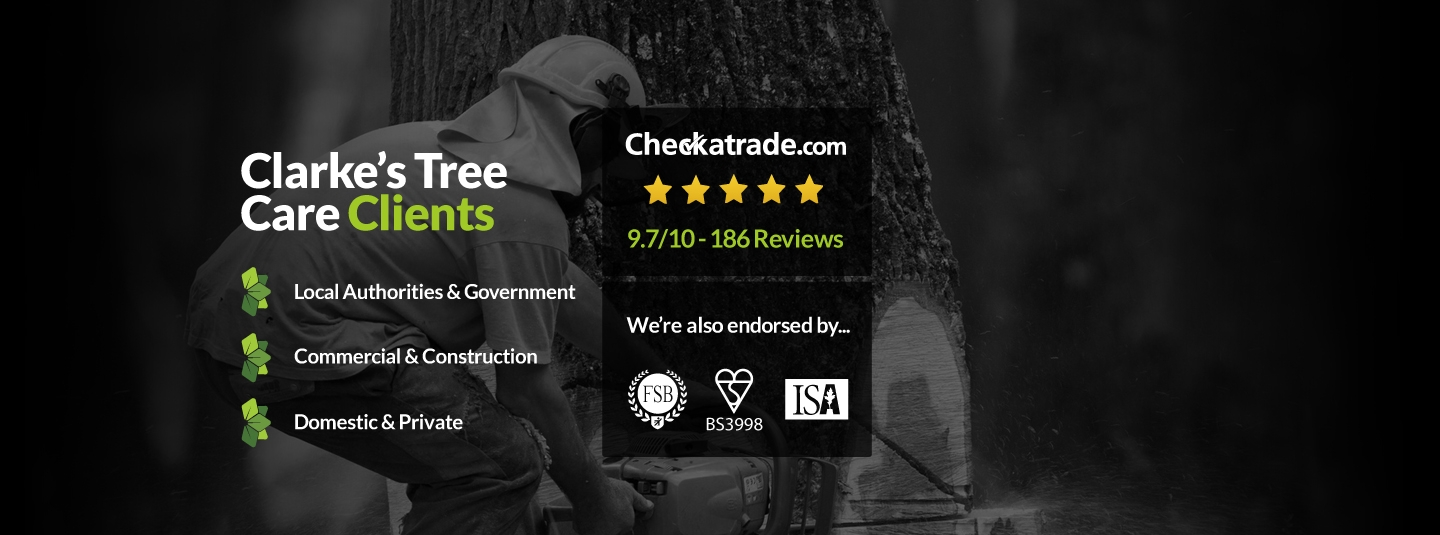 Clarkes Tree Care Clients