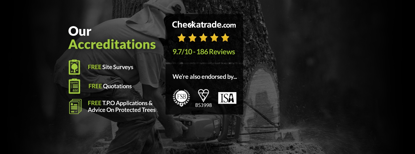 Clarkes Tree Care Our Accreditations