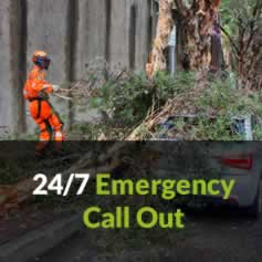 Clarkes Tree Care Emergencies