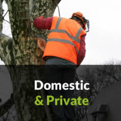 Clarkes Tree Care Clients - Domestic
